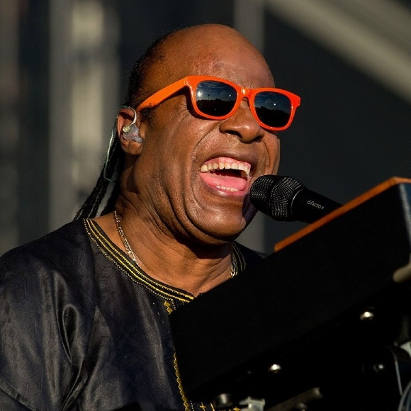 Stevie Wonder Image