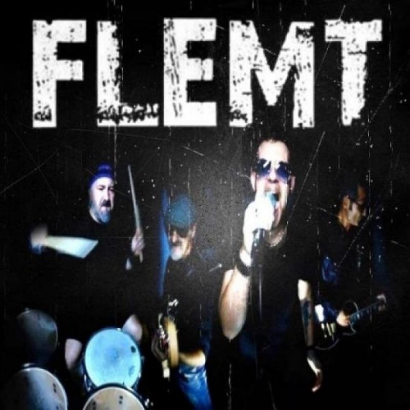 Flemt Image